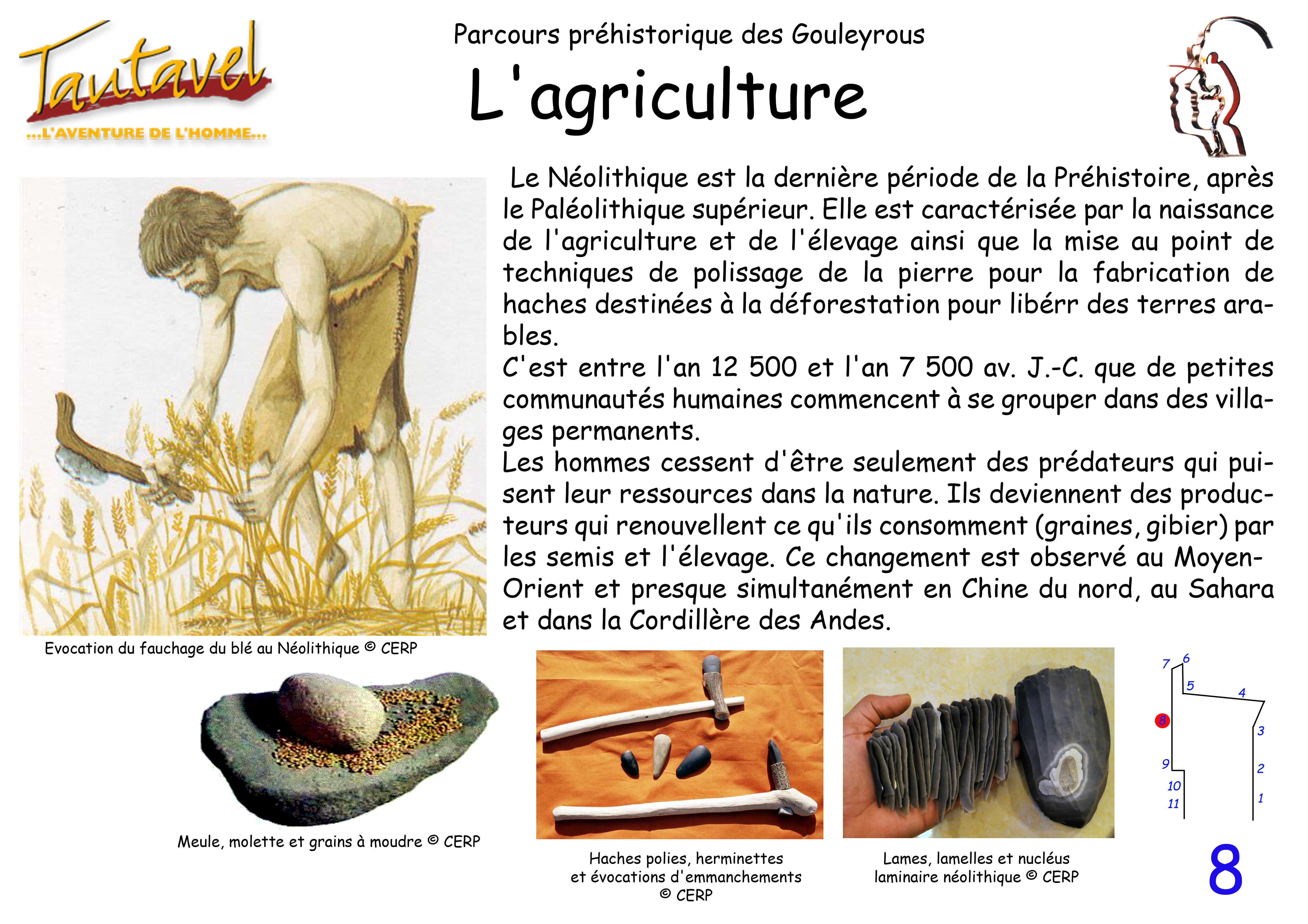 Naissance de l'Agriculture